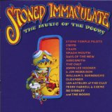 Stoned Immaculate (the Music Of the Doors)